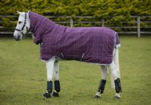 Horseware Rhino Pony  All In One (For Shetland Ponies and Small Ponies)